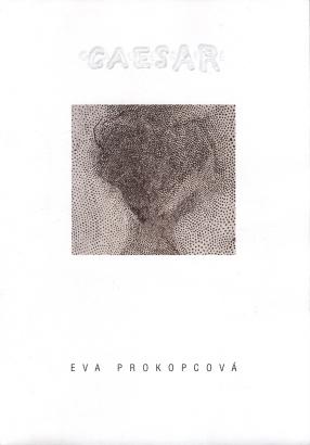 Eva Prokopcová: Rytmy a fragmenty