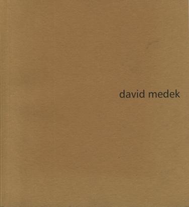 David Medek, Tomáš Medek