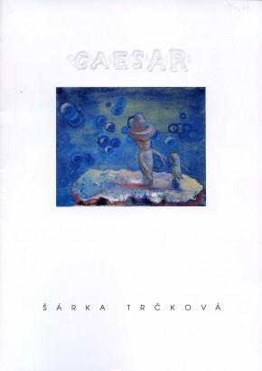 Šárka Trčková: Na houbách