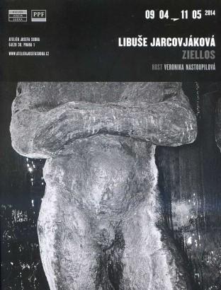 Libuše Jarcovjáková: Ziellos