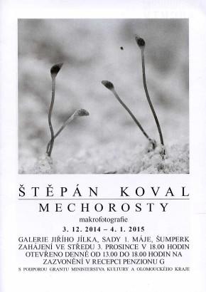 Štěpán Koval: Mechorosty