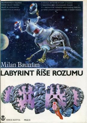 Bauman, Milan - Labyrint říše rozumu