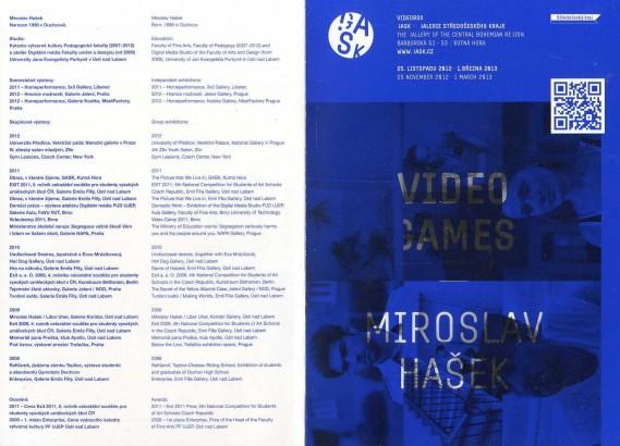Miroslav Hašek: Video Games
