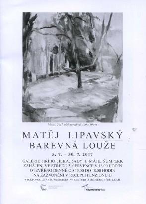 Matěj Lipavský: Barevná louže
