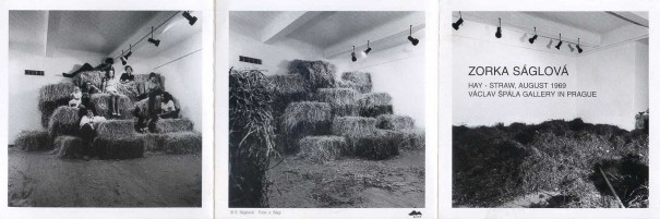 Zorka Ságlová: Hay - staw