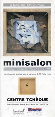 Minisalon