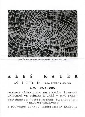 Aleš Kauer: City?