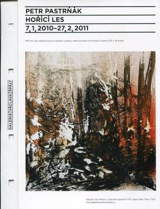 Petr Pastrňák: Hořící les